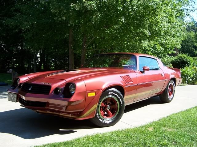 1979 Z28 CAMARO Graphics Code 1979 Z28 CAMARO Comments Pictures 640x480