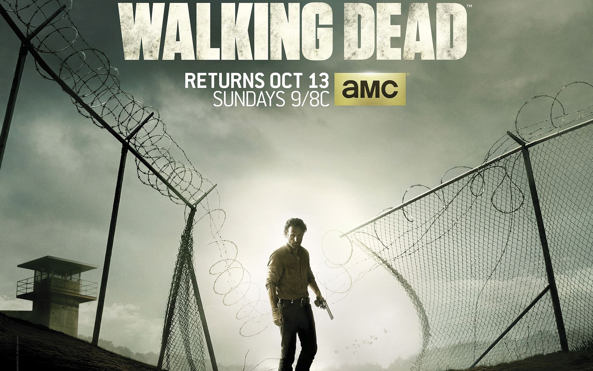 the walking dead 2013, zombie, amc, movie, Shane Walsh, poster film ...