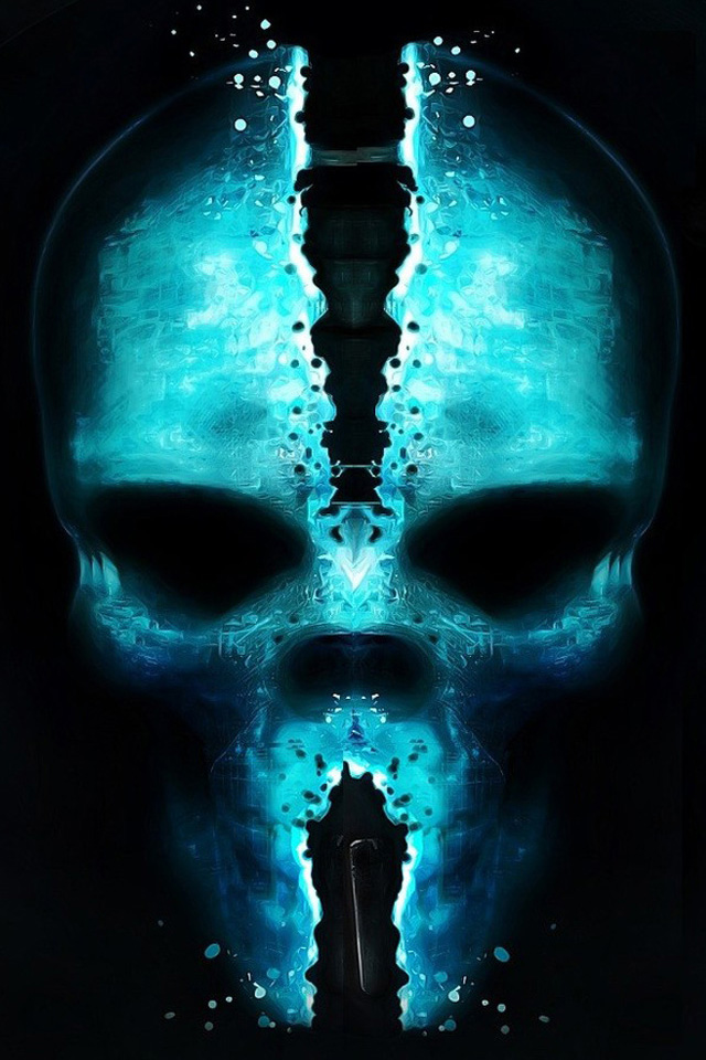 Ghost Rider Skull Iphone Wallpaper Download Wallpapers And Car 640x960