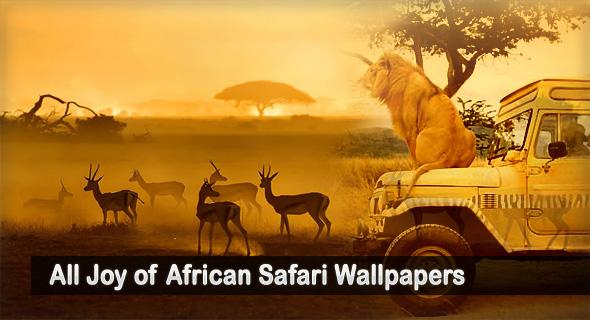 African Safari Wallpaper Wallpapersafari HD Wallpapers Download Free Images Wallpaper [1000image.com]