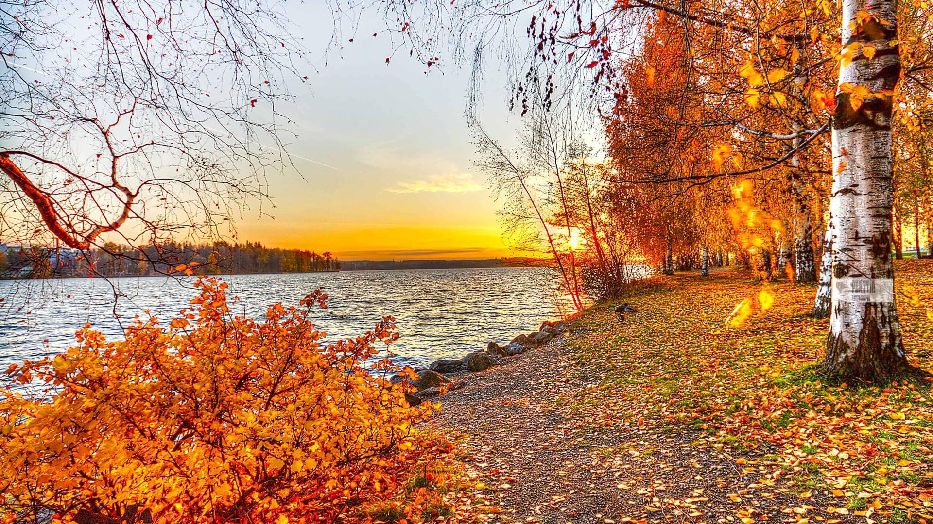 64 Autumn Wallpapers For Desktop On Wallpapersafari