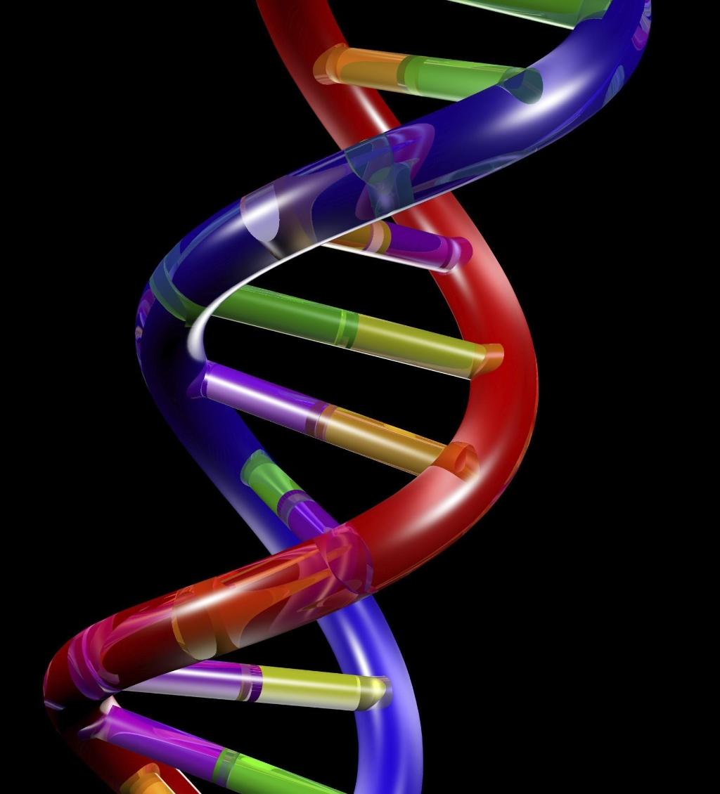 DNA Double Helix Wallpaper
