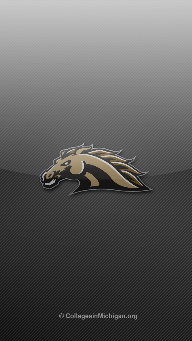Western Michigan WMU Broncos iPhone 5 Wallpapers   Colleges in 640x1136