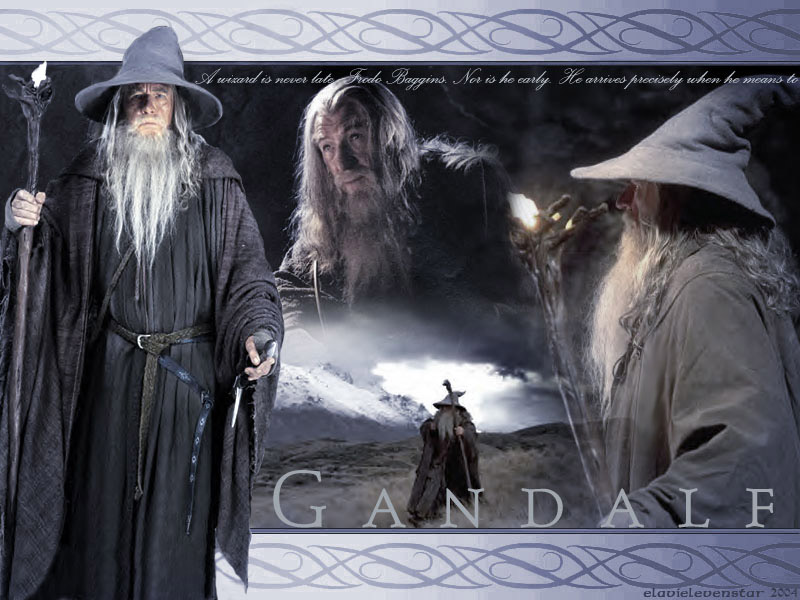 Gandalf the Grey wallpapers are presented on the website Wallpaper 800x600