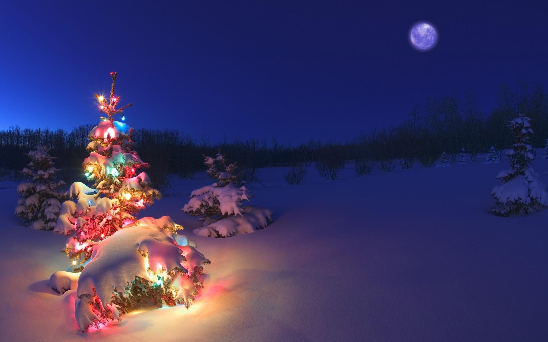 Weihnachtsbilder Desktop Kostenlos.Free Download Computers Desktop With Christmas Lights Snow Desktop
