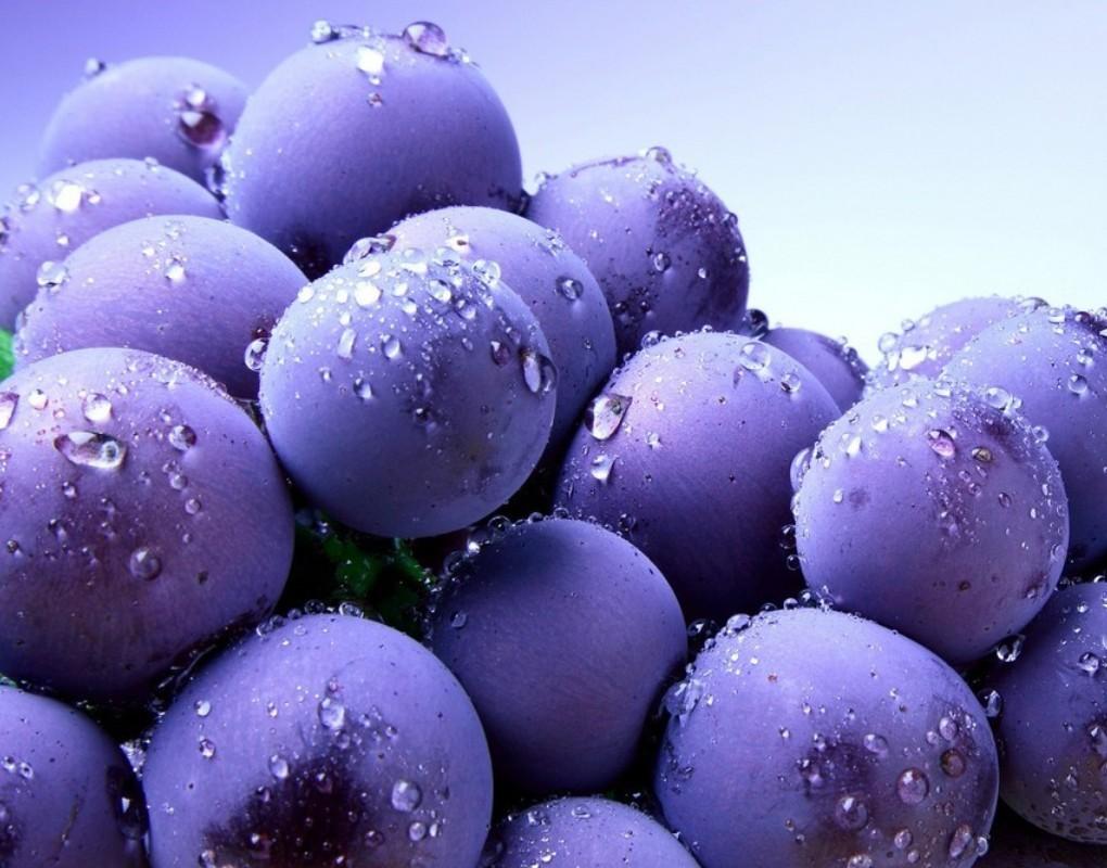 blueberry pics fruit wallpaper desktop blueberry pics fruit desktop 1020x800
