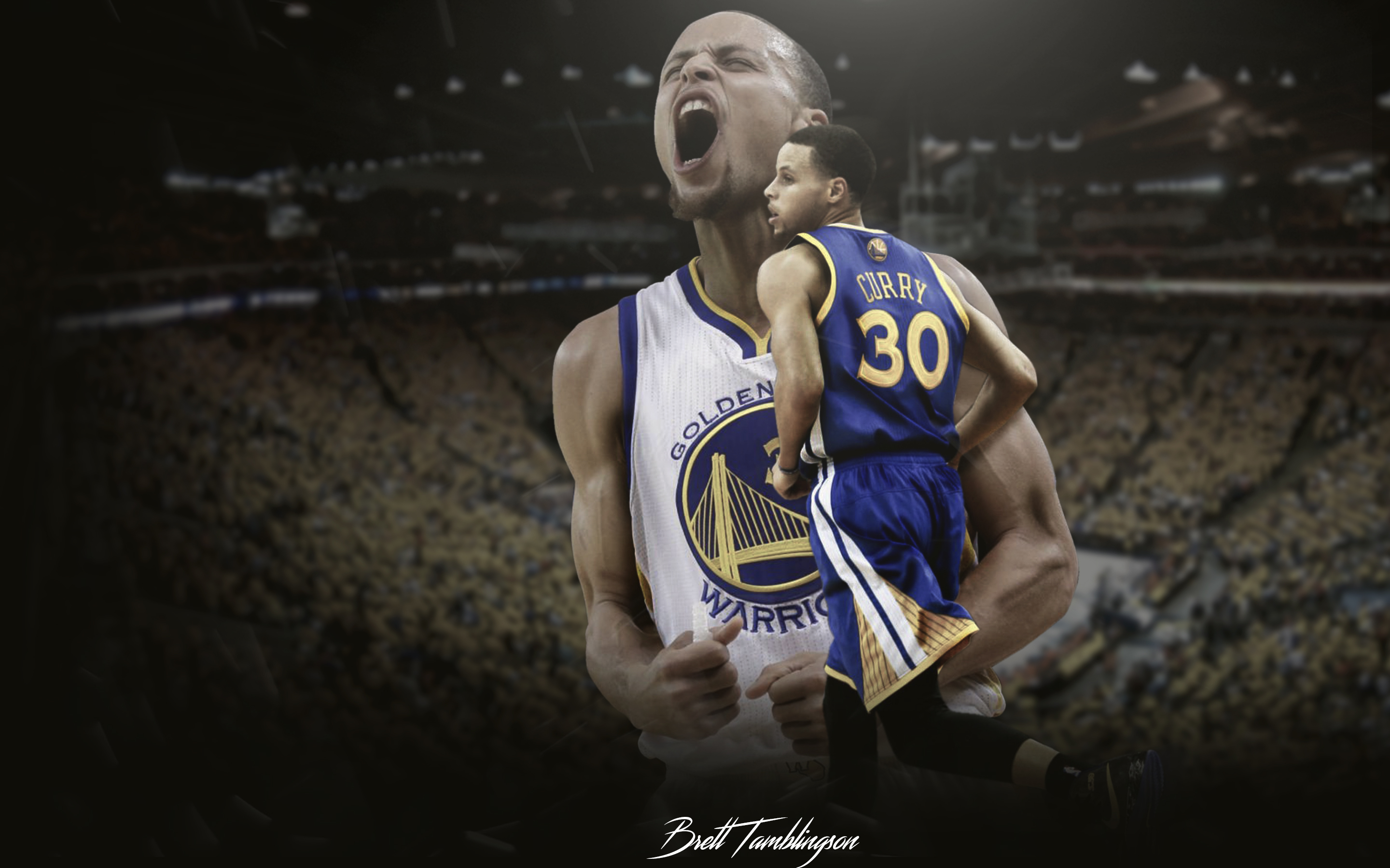 Steph Curry Passion 2880x1800