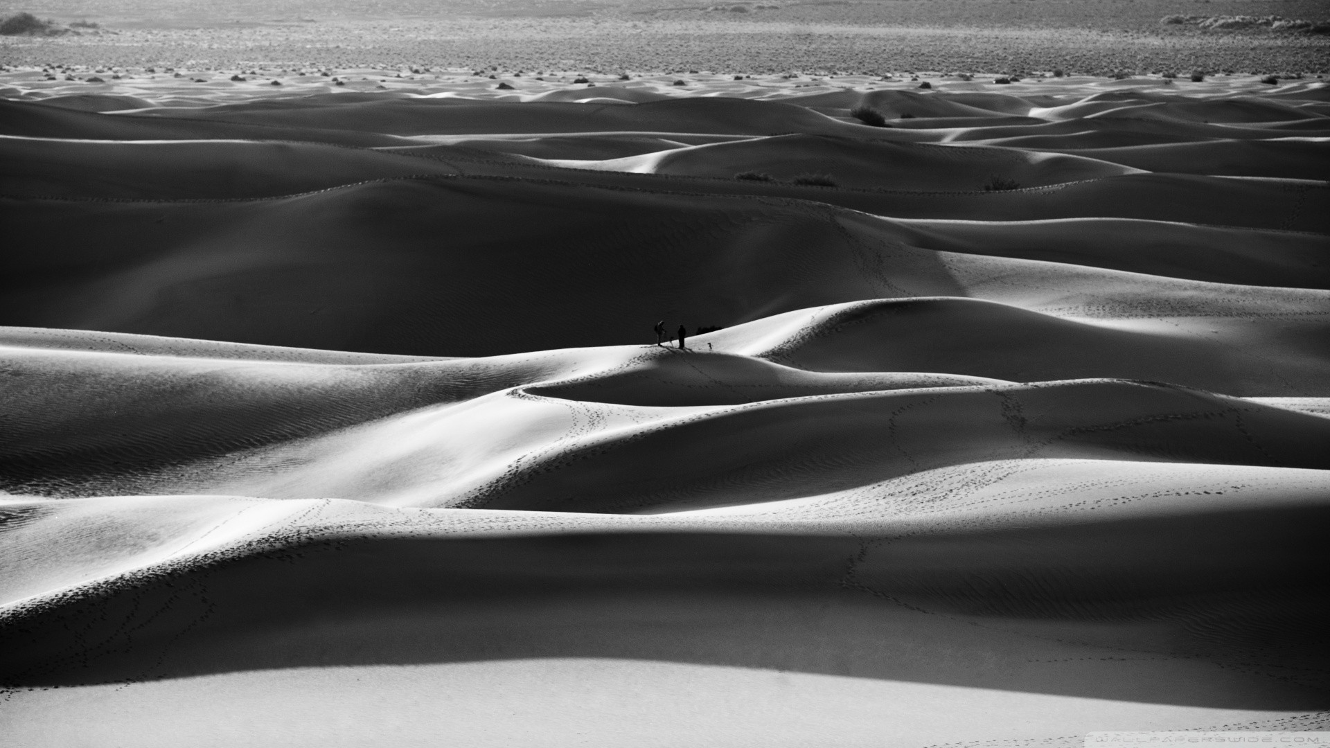 Black and white nature sand desert wallpaper 1920x1080