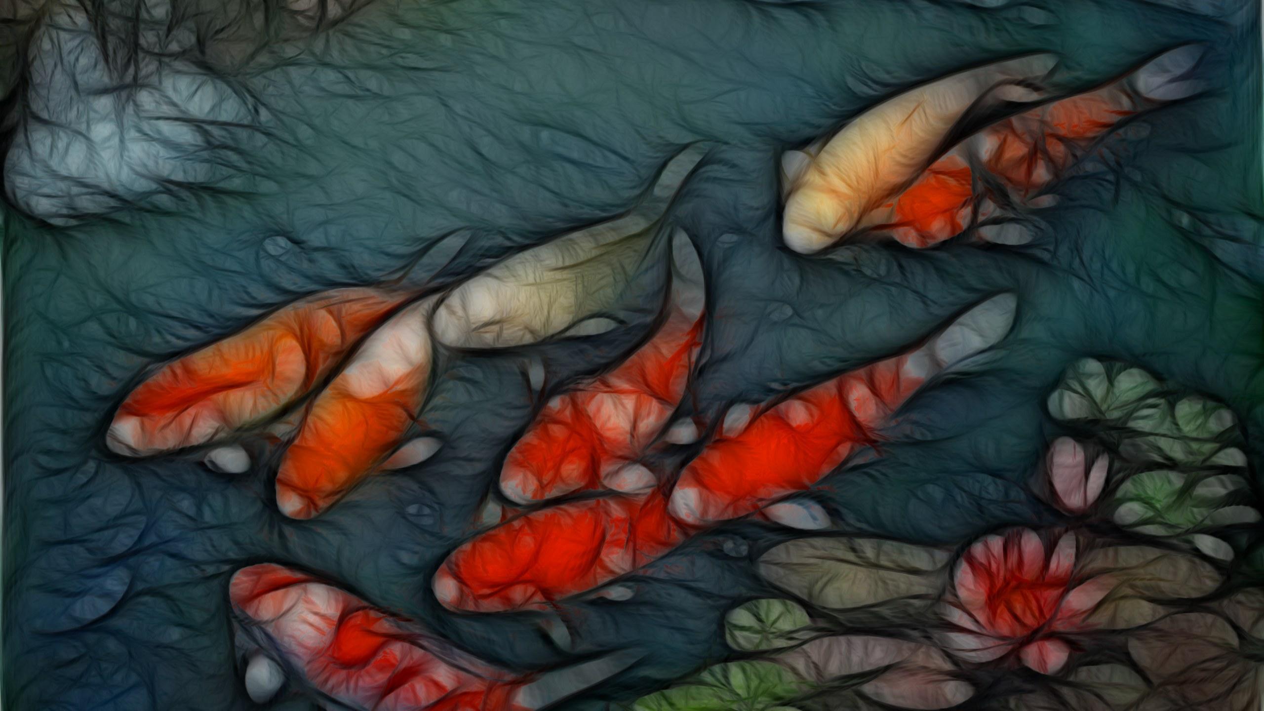 Koi wallpapers wallpapersafari for Koi fish wallpaper for walls