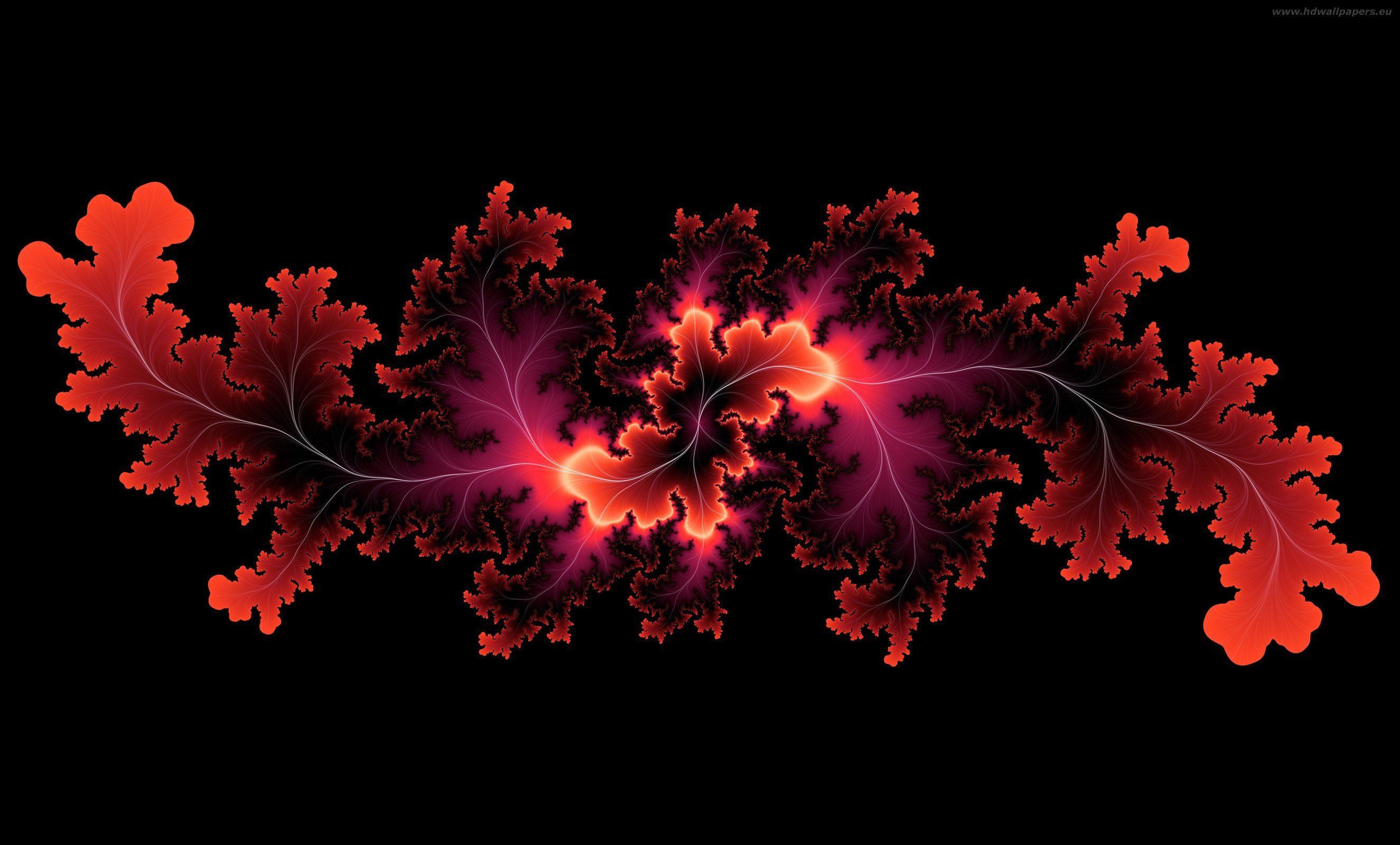 Pin 3d The Best Wallpapers 2650x1600