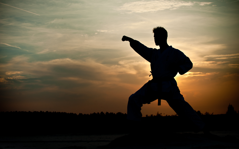 st pierre mixed martial arts desktop background pics karate wallpaper 1440x900