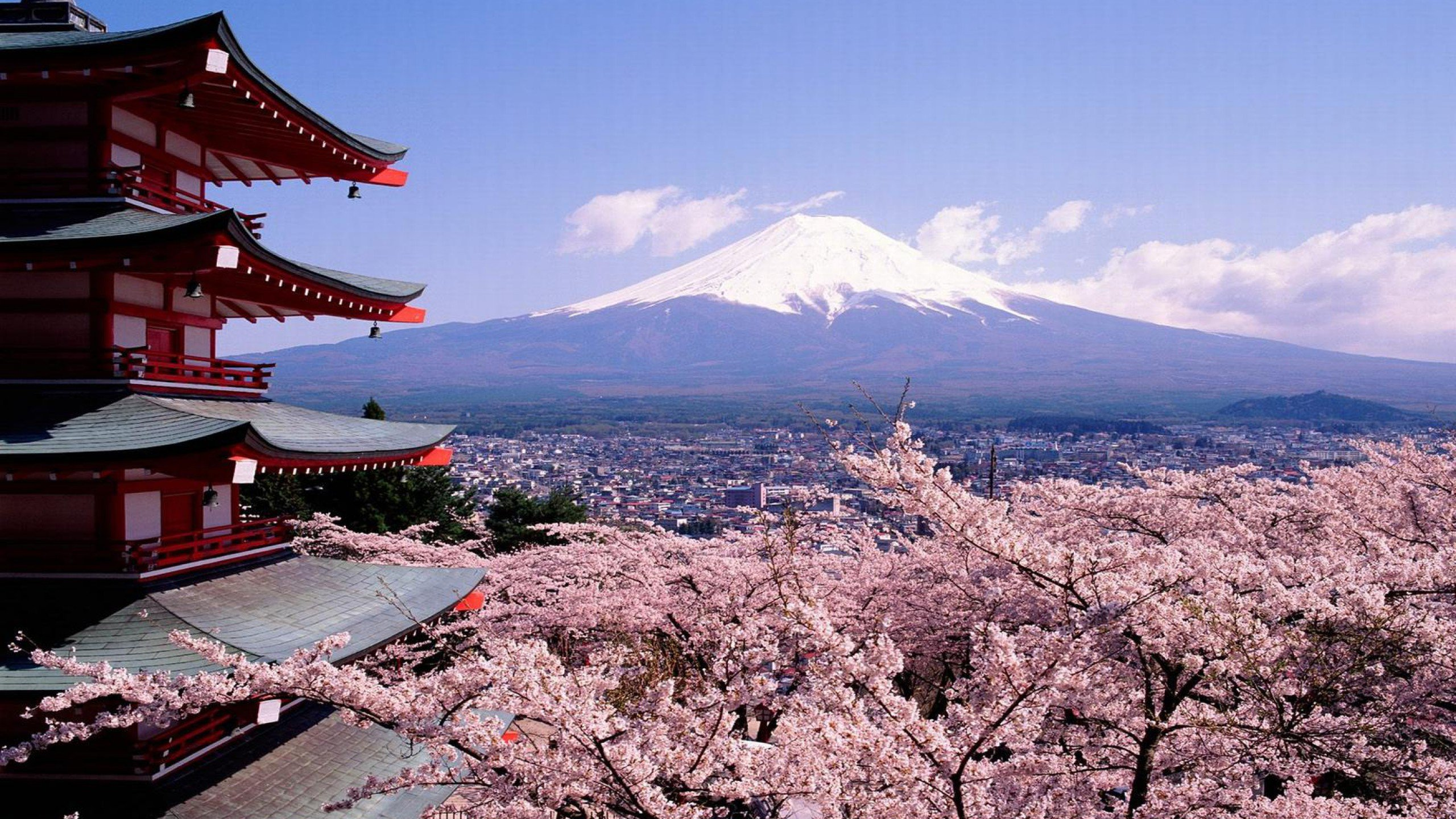 Mount Fuji Japan Wallpaper   Travel HD Wallpapers 2560x1440