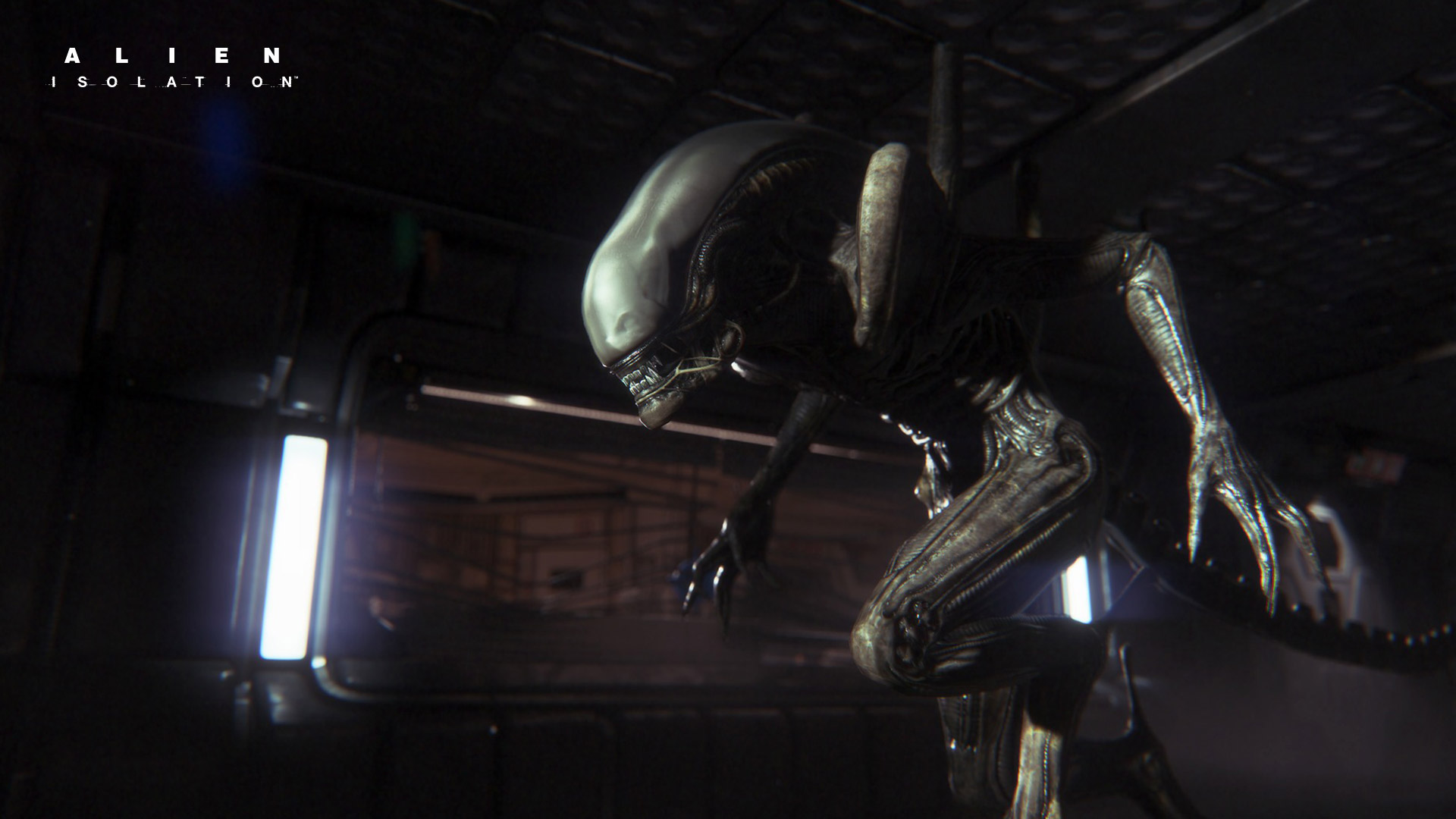 Game HD Wallpaper 1024x576 Alien Isolation Video Game HD Wallpaper 1920x1080