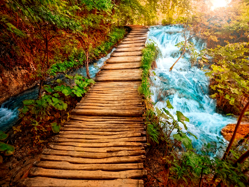 Download Beautiful Nature Wallpaper Download Live Hd Wallpaper Hq