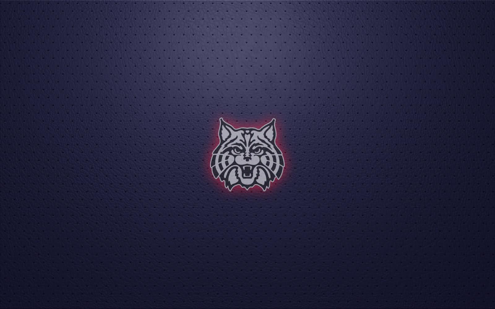 University of Arizona Wildcats Wallpaper 1600x1000