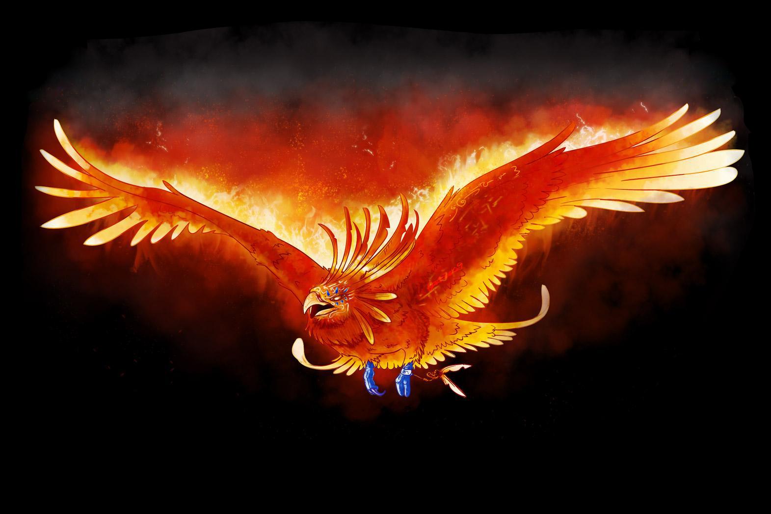 Wallpapers Phoenix 85 1571x1047
