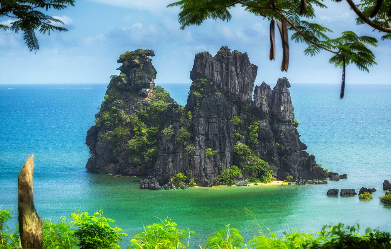 Wallpaper trees branches rocks island The Pacific ocean New 1332x850