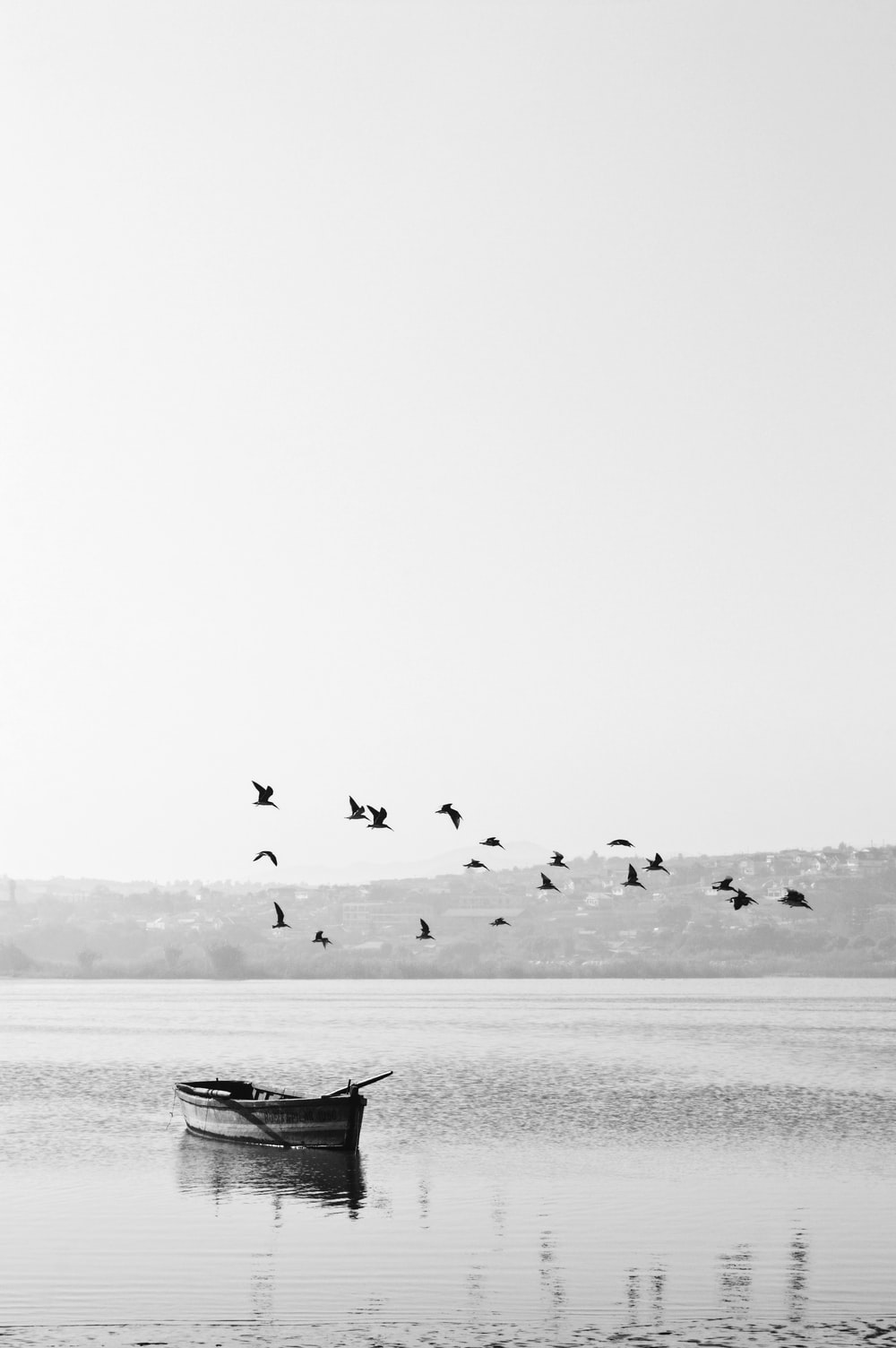 Black And White Wallpapers HD Download [500 HQ] Unsplash 1000x1504