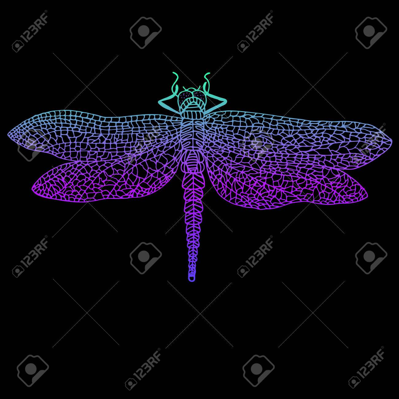 Dragonfly Beautiful Winged Insect Bright Blue Violet Color 1300x1300