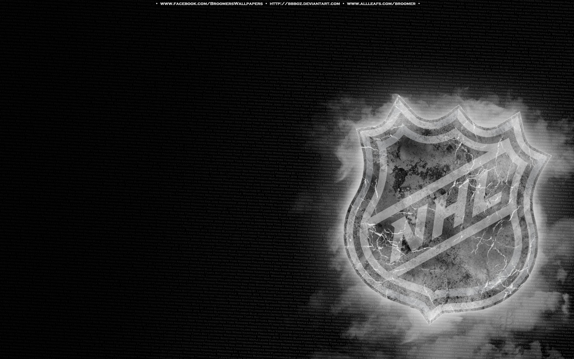 NHL Ice by bbboz 1920x1200