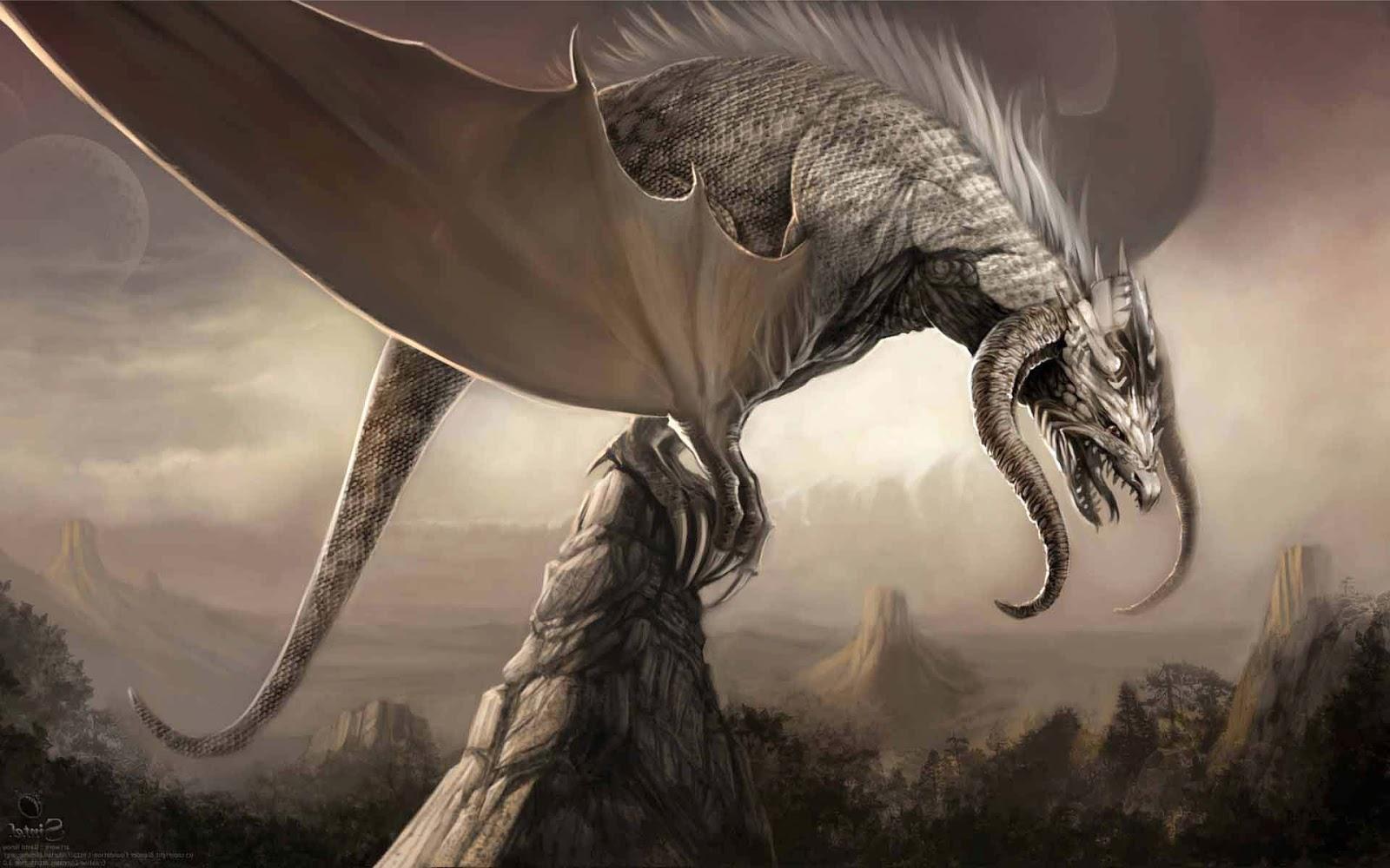 Dragon Wallpapers Hd Wallpapersafari