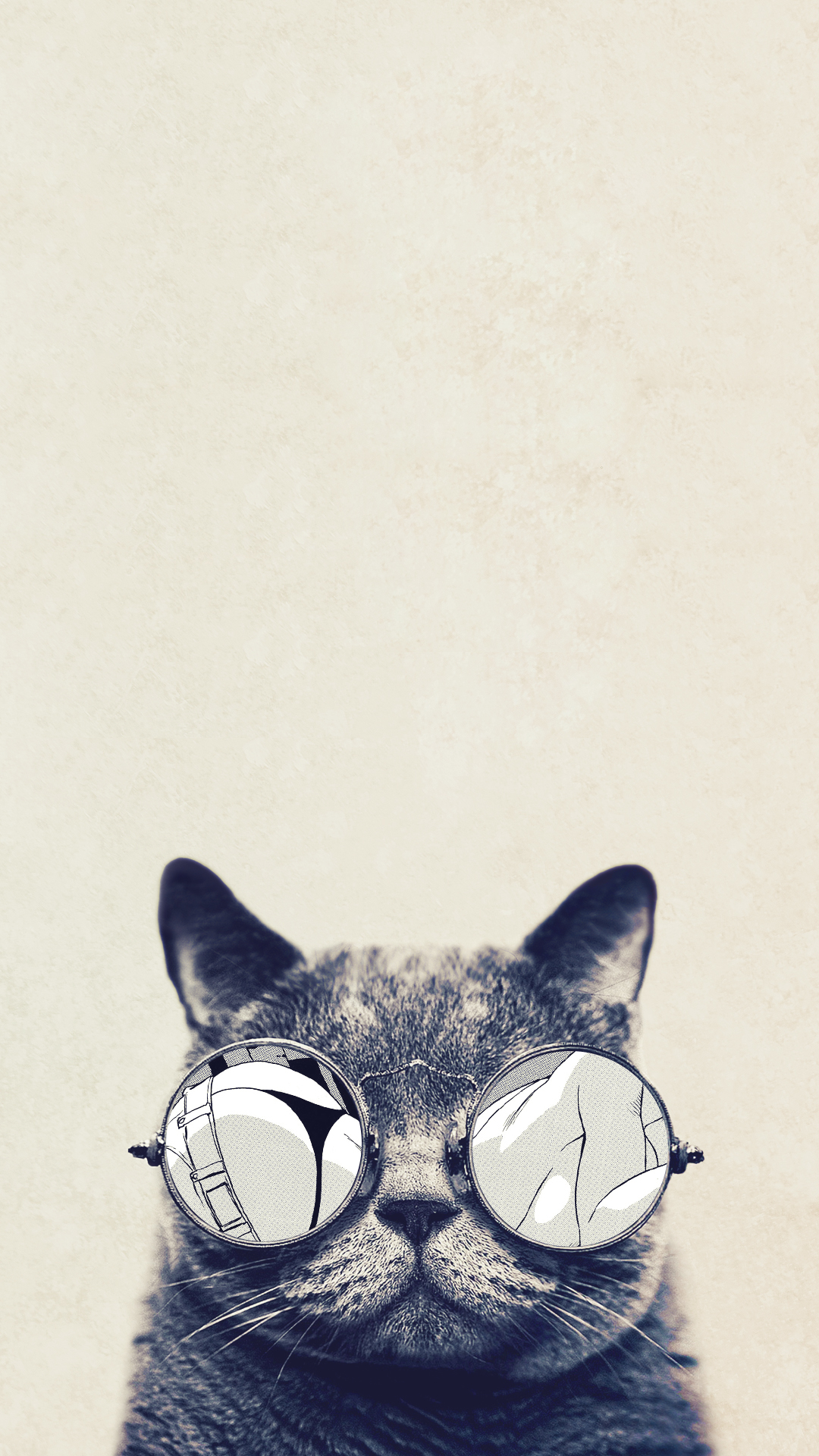 Cool Cat Glasses iPhone 6 Plus HD Wallpaper HD Wallpapers and iPhone 1080x1920