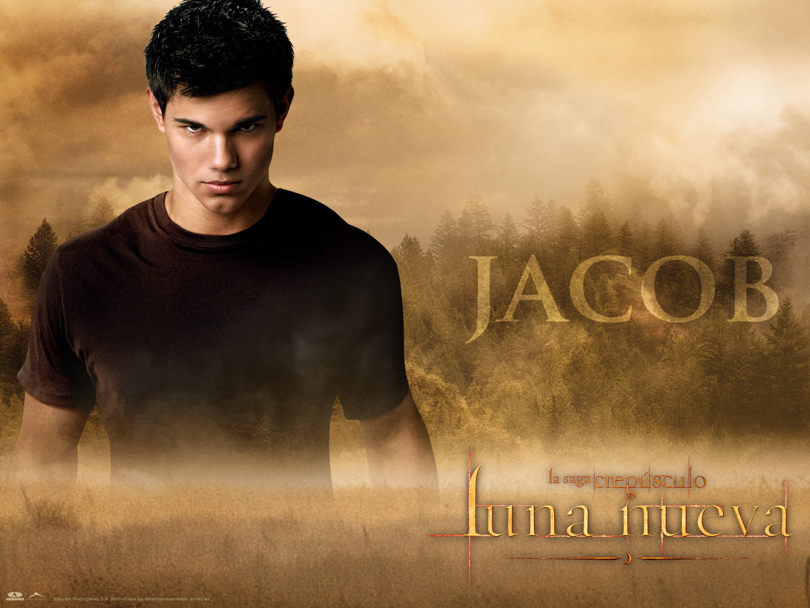 Download Jacob Twilight Wallpapers 1600x1200