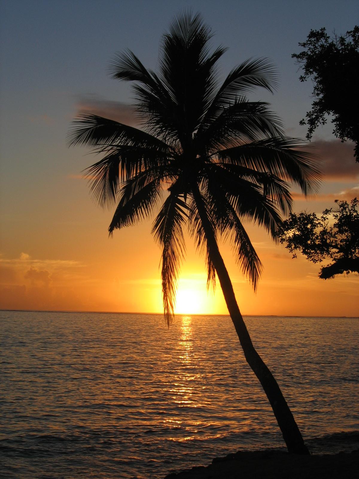 Caribbean Sunset Desktop Backgrounds for HD Wallpaper wall 1200x1600
