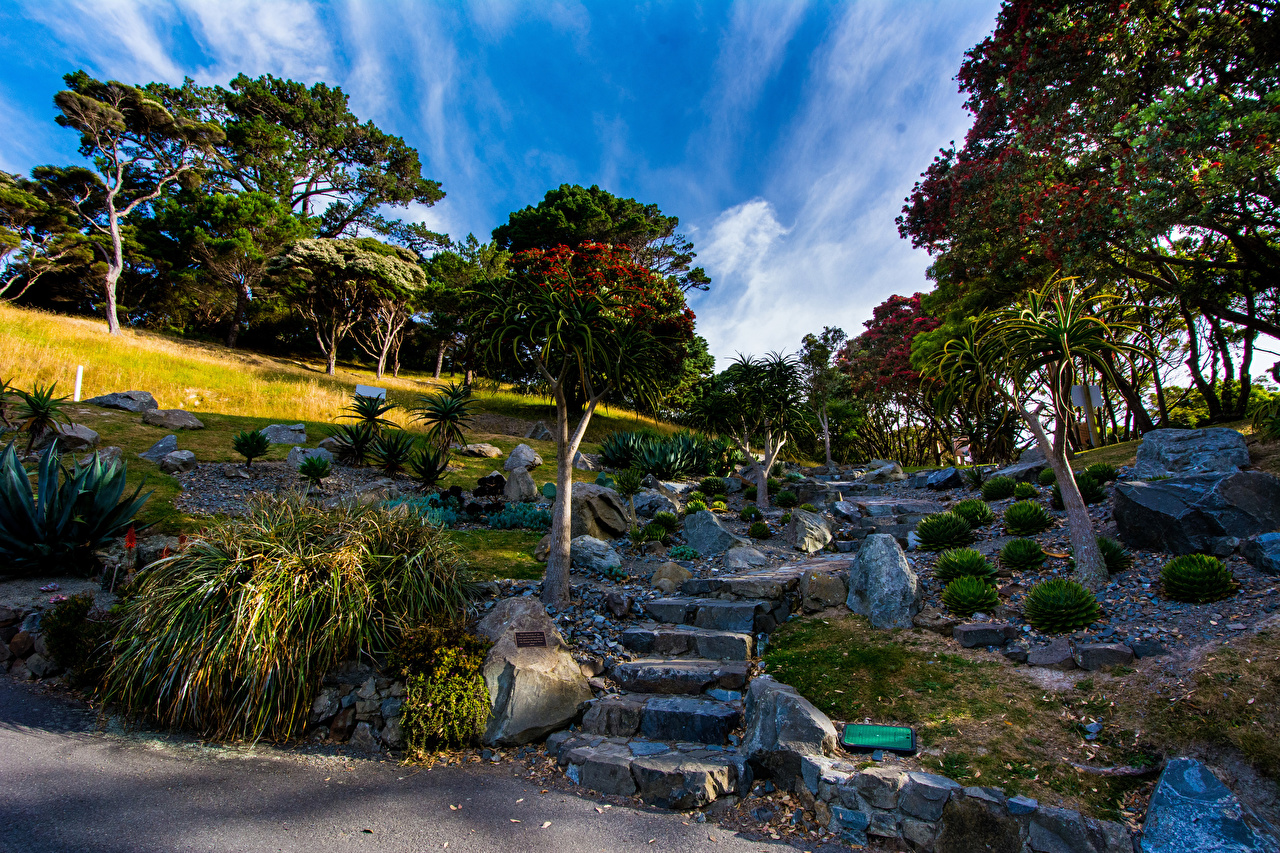 Images New Zealand Wellington Botanical garden Nature staircase park 1280x853