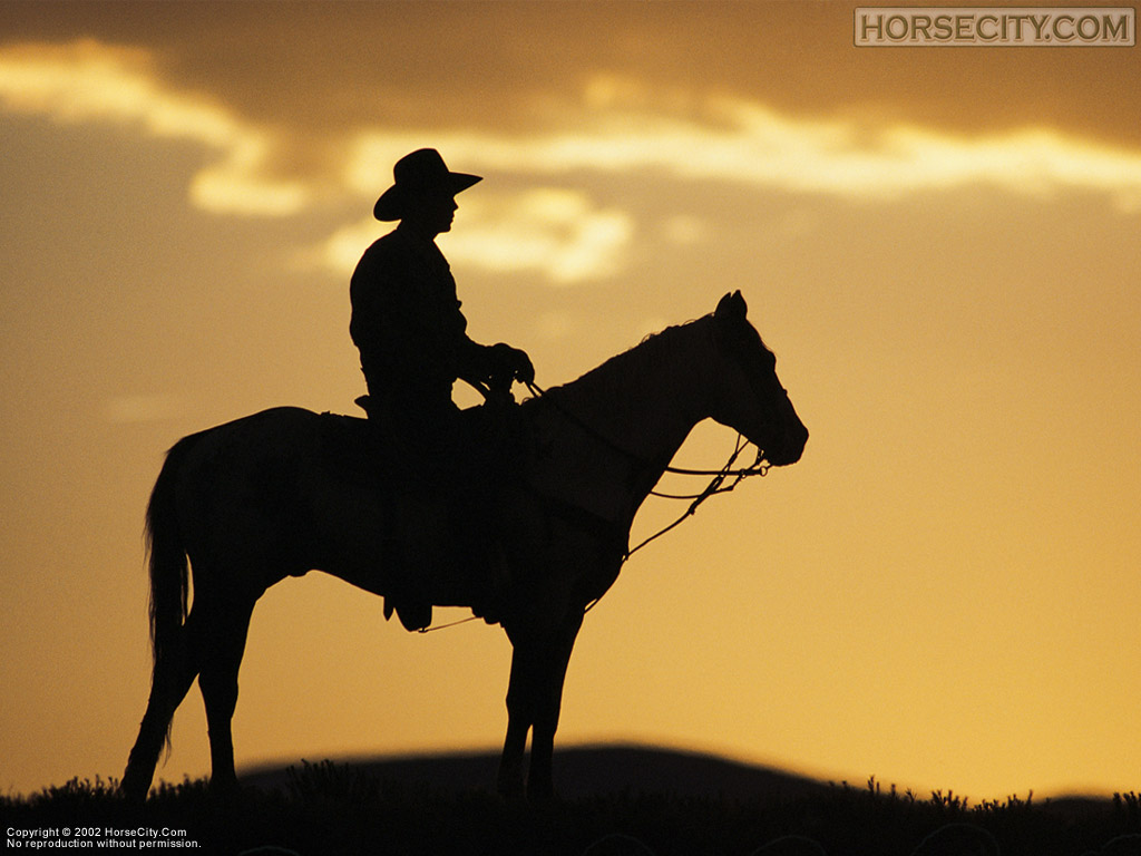 Back Gallery For cowboy wallpaper western 1024x768