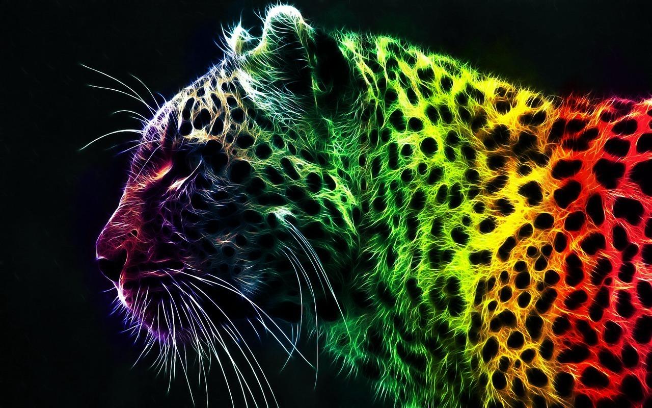 Rainbow   Bright Colors Wallpaper 18591234 1280x800