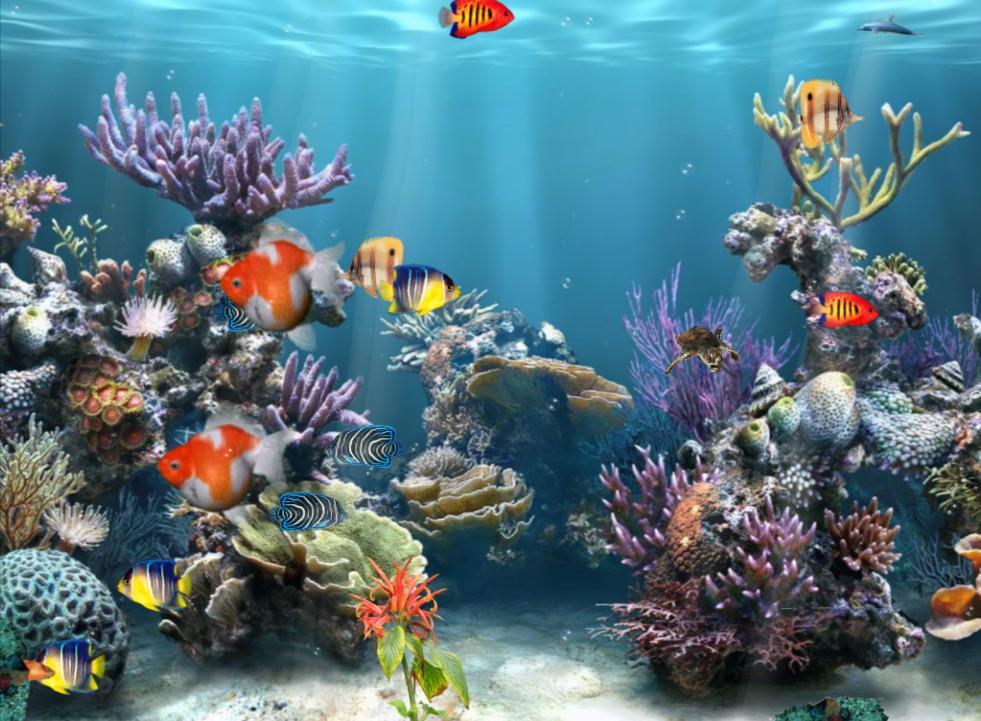 Free 3D Aquarium Wallpaper