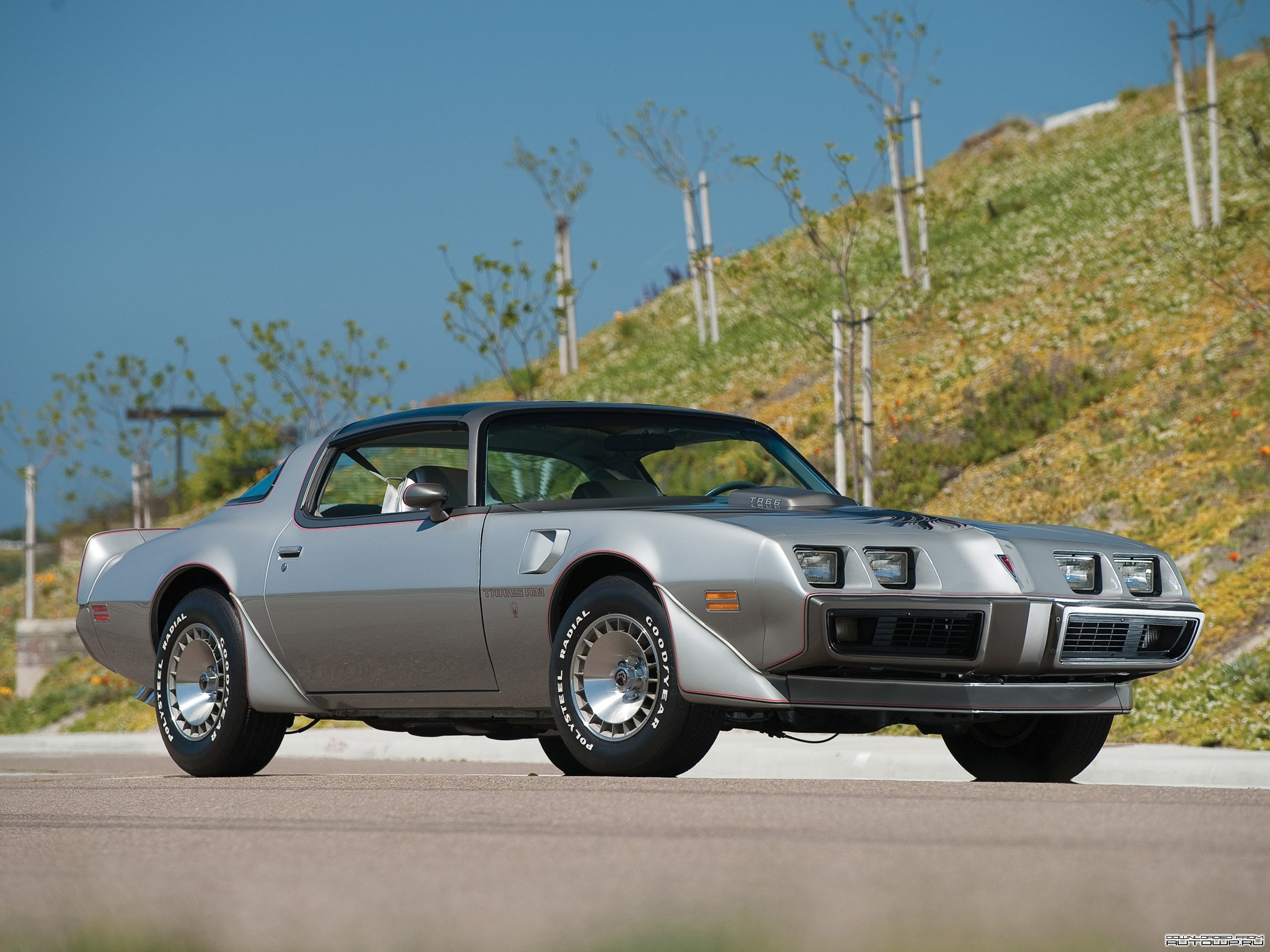 yearone trans am wallpaper - photo #16