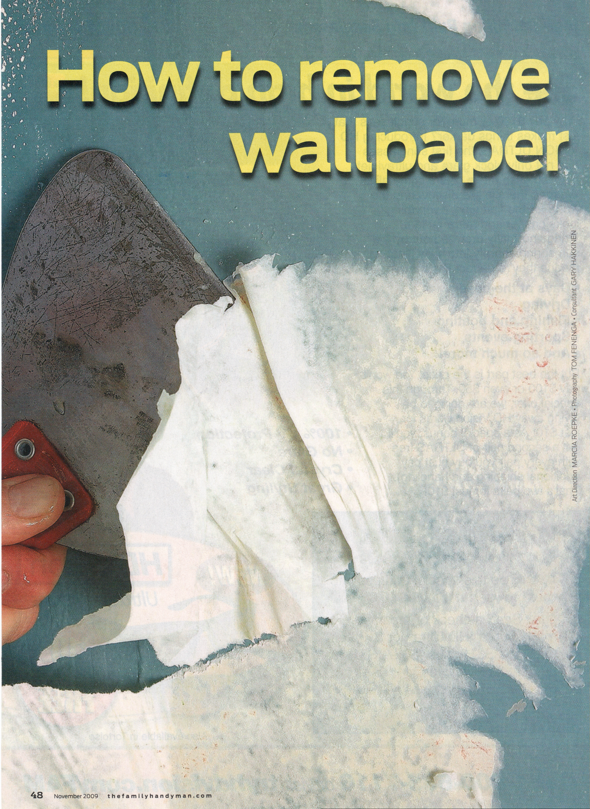 Pignotti Property Inspections How to Remove Wallpaper 1168x1600