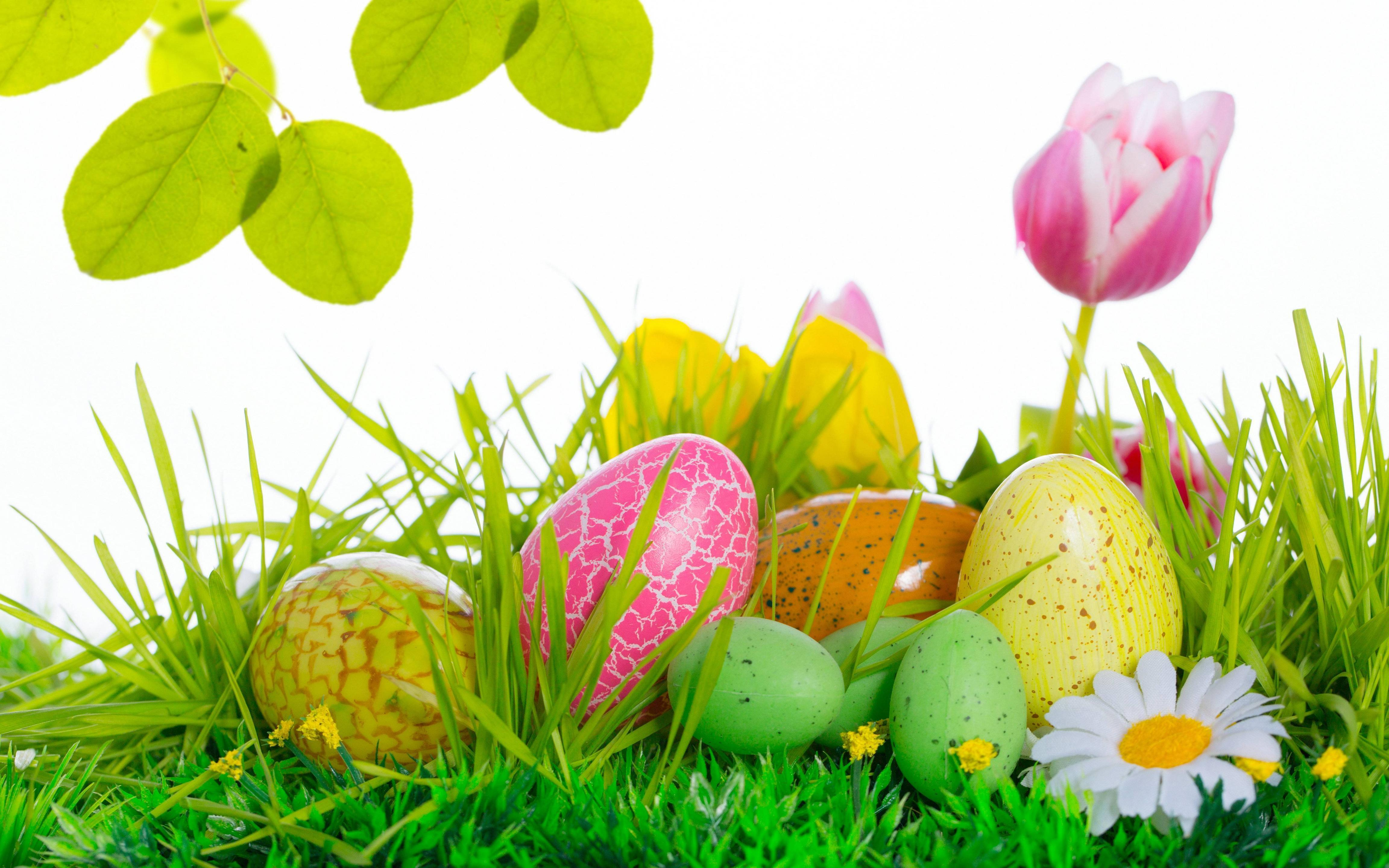 Easter Wallpapers For Computer 4608x2880