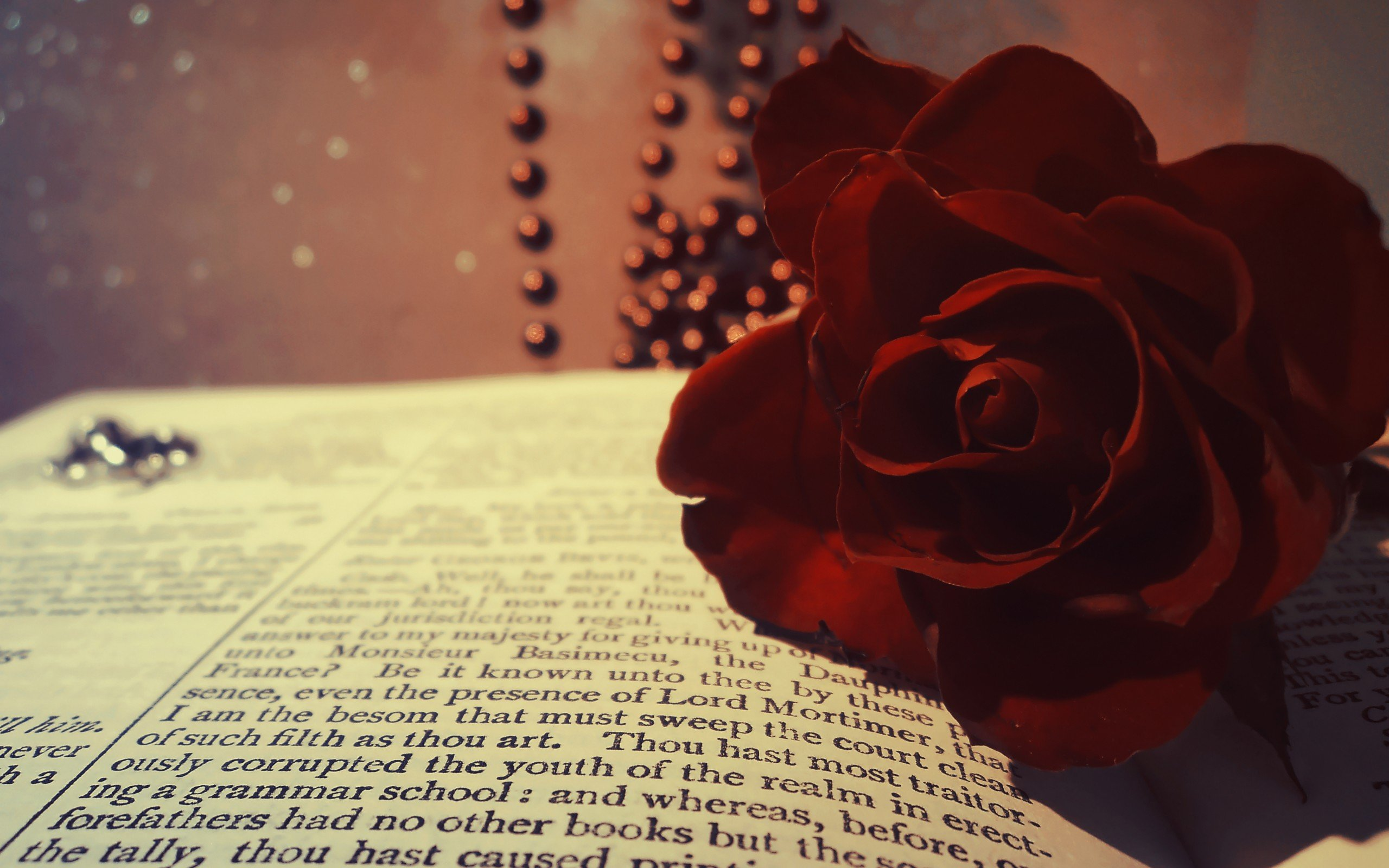 book rose red burgundy flower beads macro bokeh wallpaper background 2560x1600