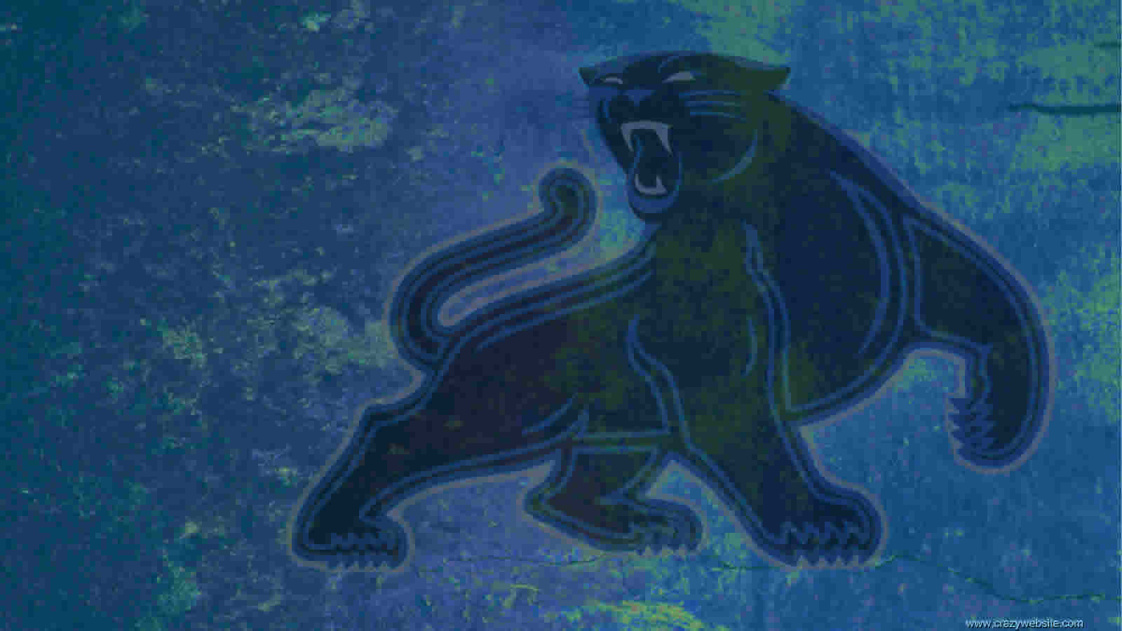 Carolina Panthers full figure panther official team logo wallpaper 1600x900
