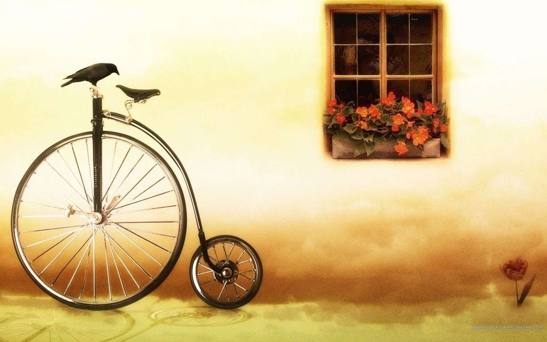 Special Bicycle Hd Desktop Wallpaper Wallpapers Hd Car Wallpapers 1920x1200