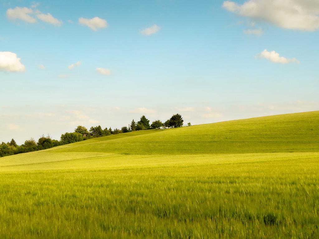 grassland scenery wallpaper Desktop Background   Scenery Wallpapers ...