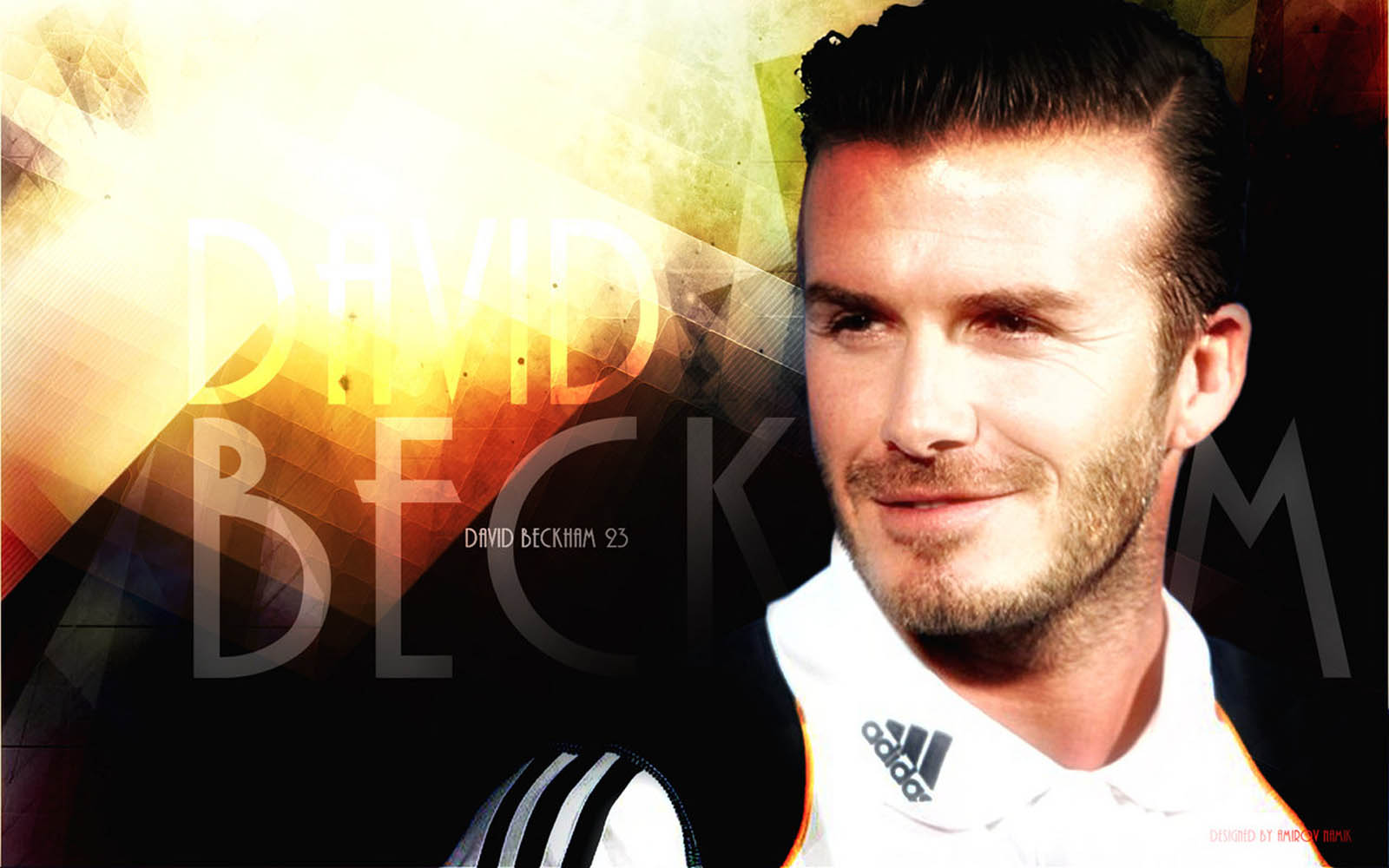 Tag David Beckham Wallpapers Backgrounds Paos Images and Pictures 1600x1000