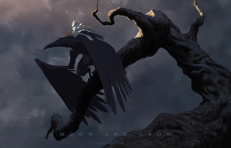 Wallpaper fantasy crow fairy wings moonlight artist digital 1332x850