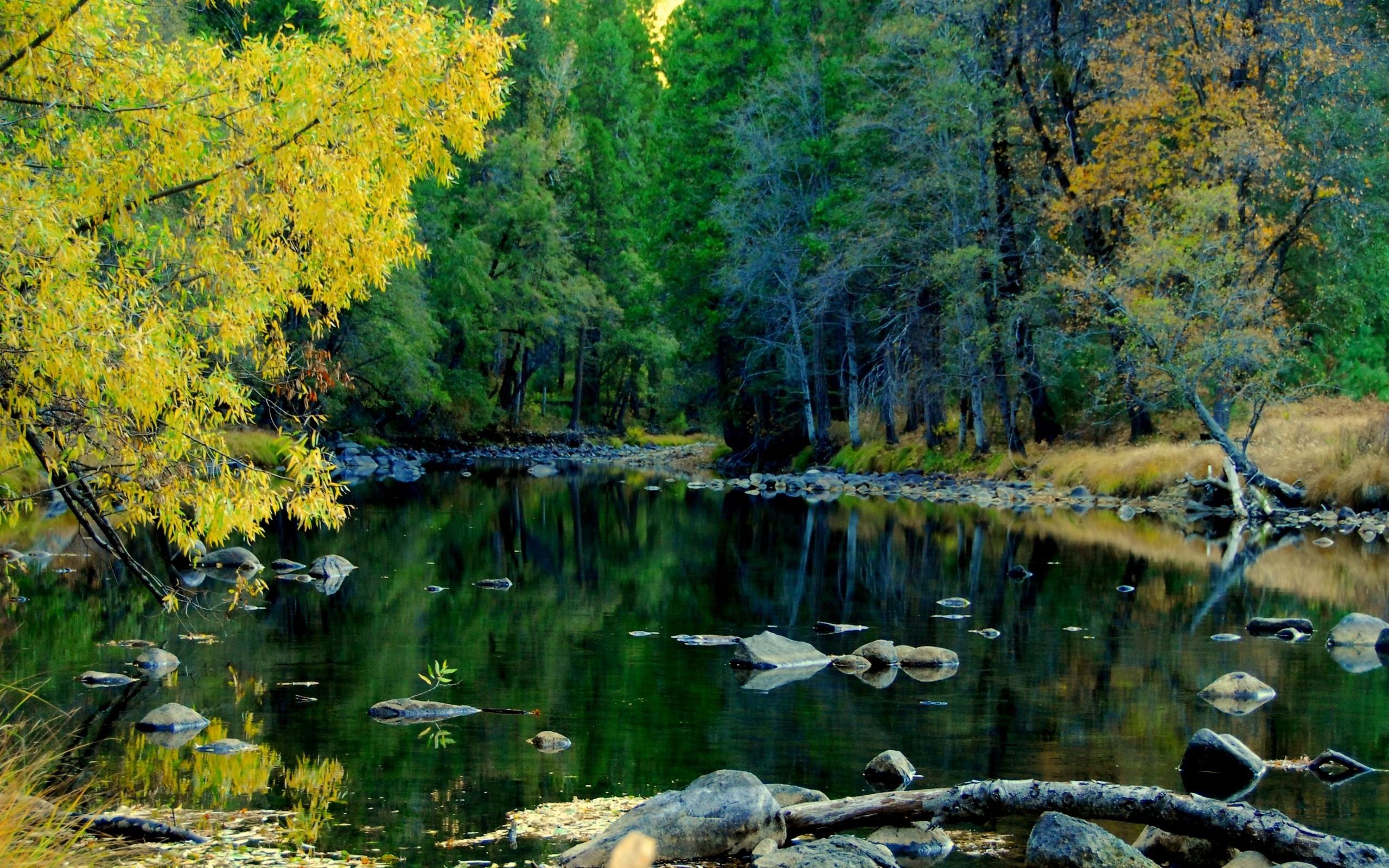 Windows 8 Wallpaper Yosemite River wallpapers x 2560x1600