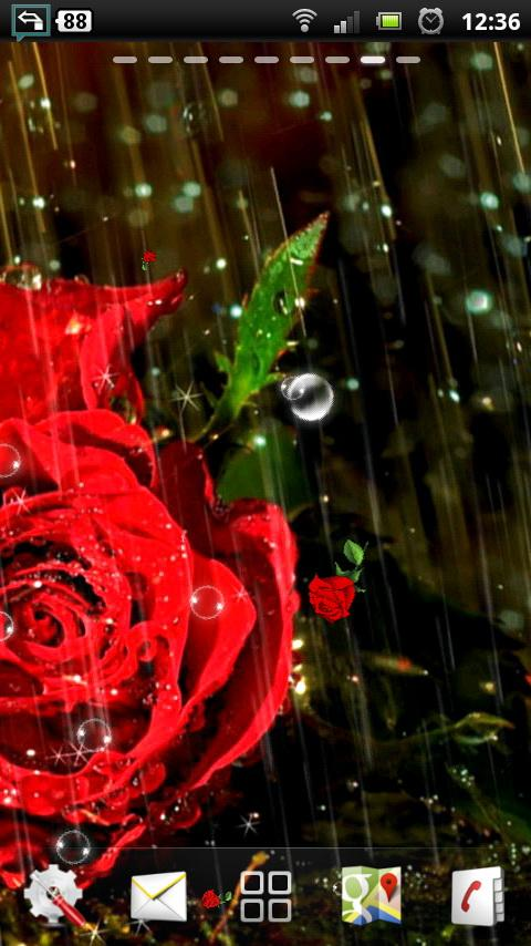 rose live wallpapers   Android Apps on Google Play 480x854