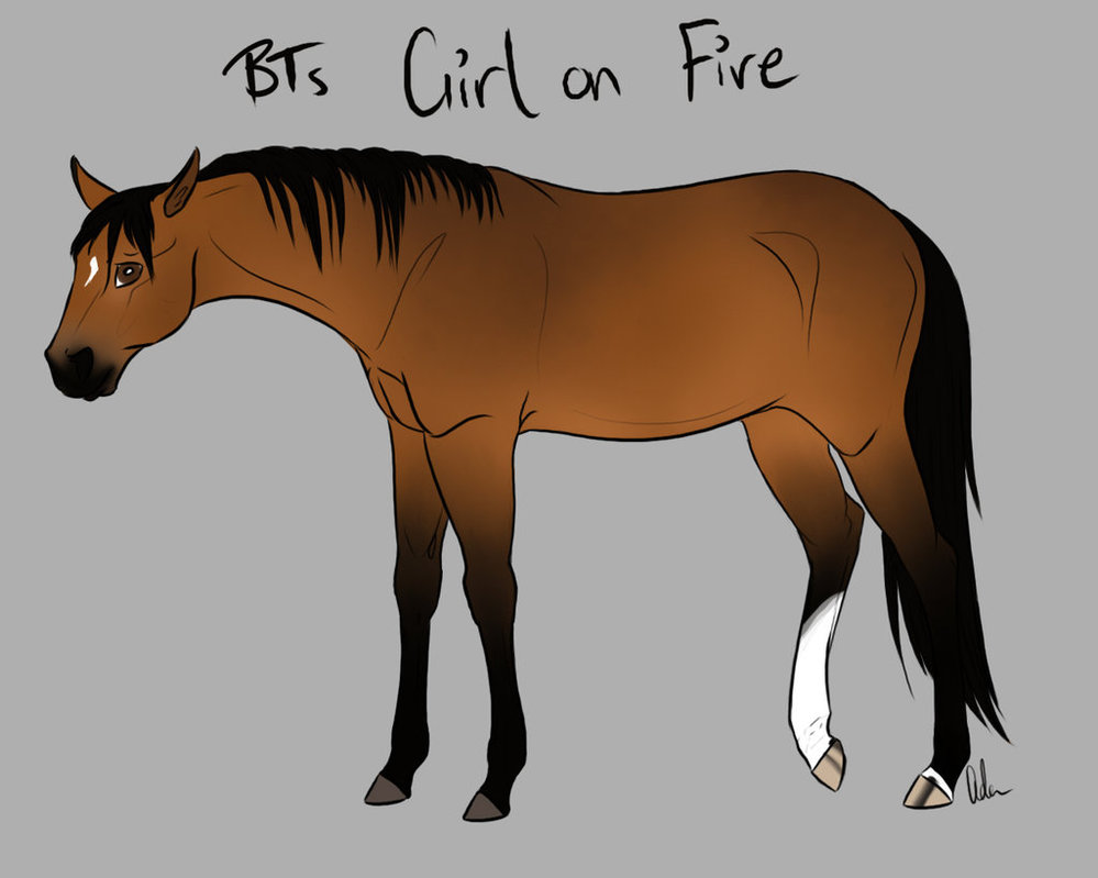 BTs Girl on Fire by Palominobrumbyfilly 999x799
