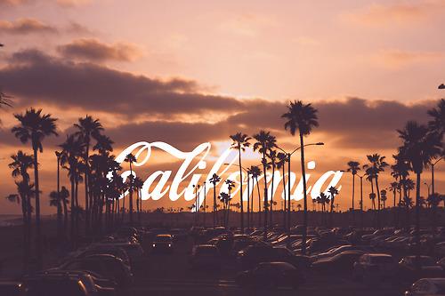 summer landscape california palm trees sunset coca cola newport 500x333