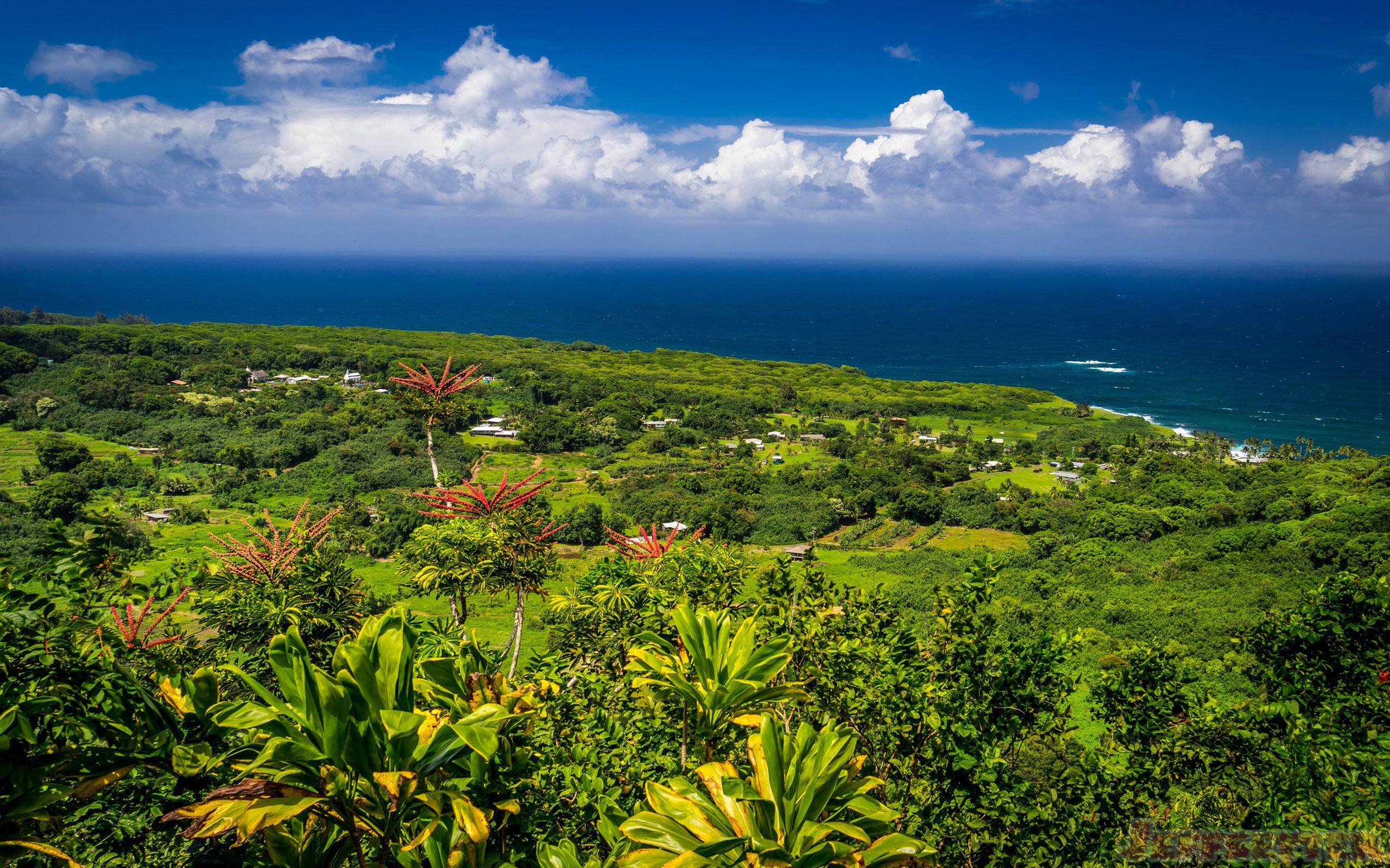 Hana Maui Hawaii Beautiful Desktop Wallpaper HD Widescreen 2560x1600