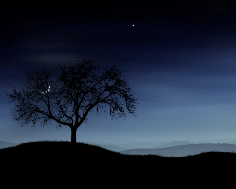 Beautiful Night Sky wallpaper 800x640