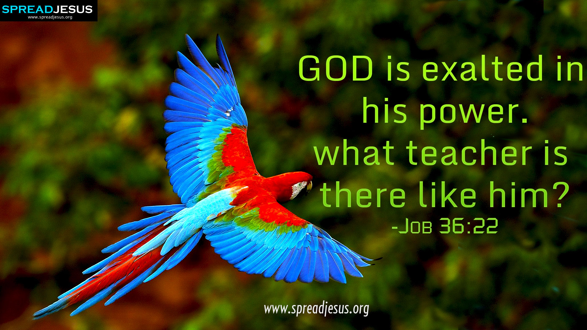 CHRISTIAN HD WALLPAPERS HOLY BIBLE QUOTES Job 3622 GOD is exalted 1920x1080