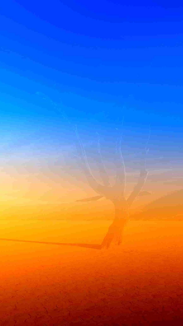 Blue and Orange scenery iPhone 5 wallpapers Background and Wallpapers 640x1136