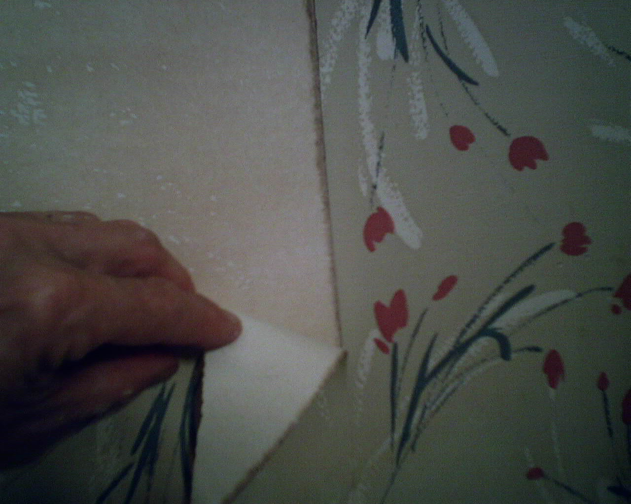 KILZ Wallpaperladys Blog 1280x1024